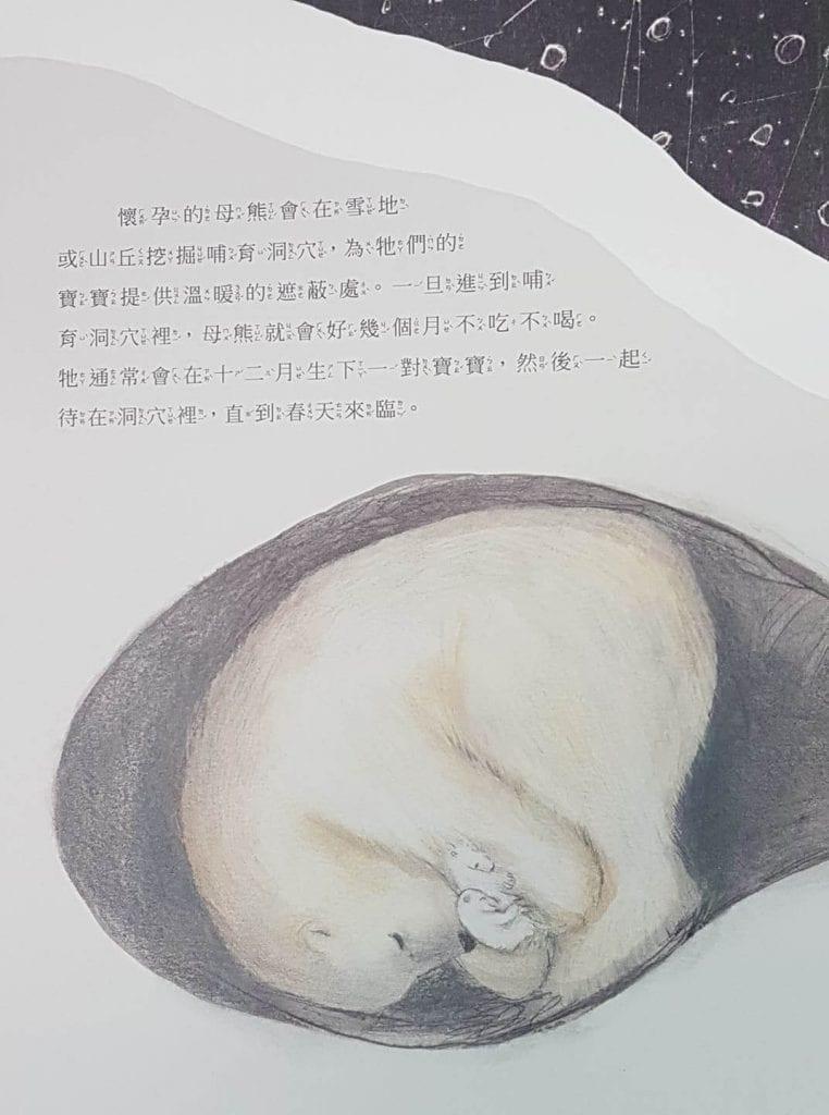 北極熊繪本