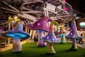 2020新北耶誕城|府中美學藝術特區 魔法森林