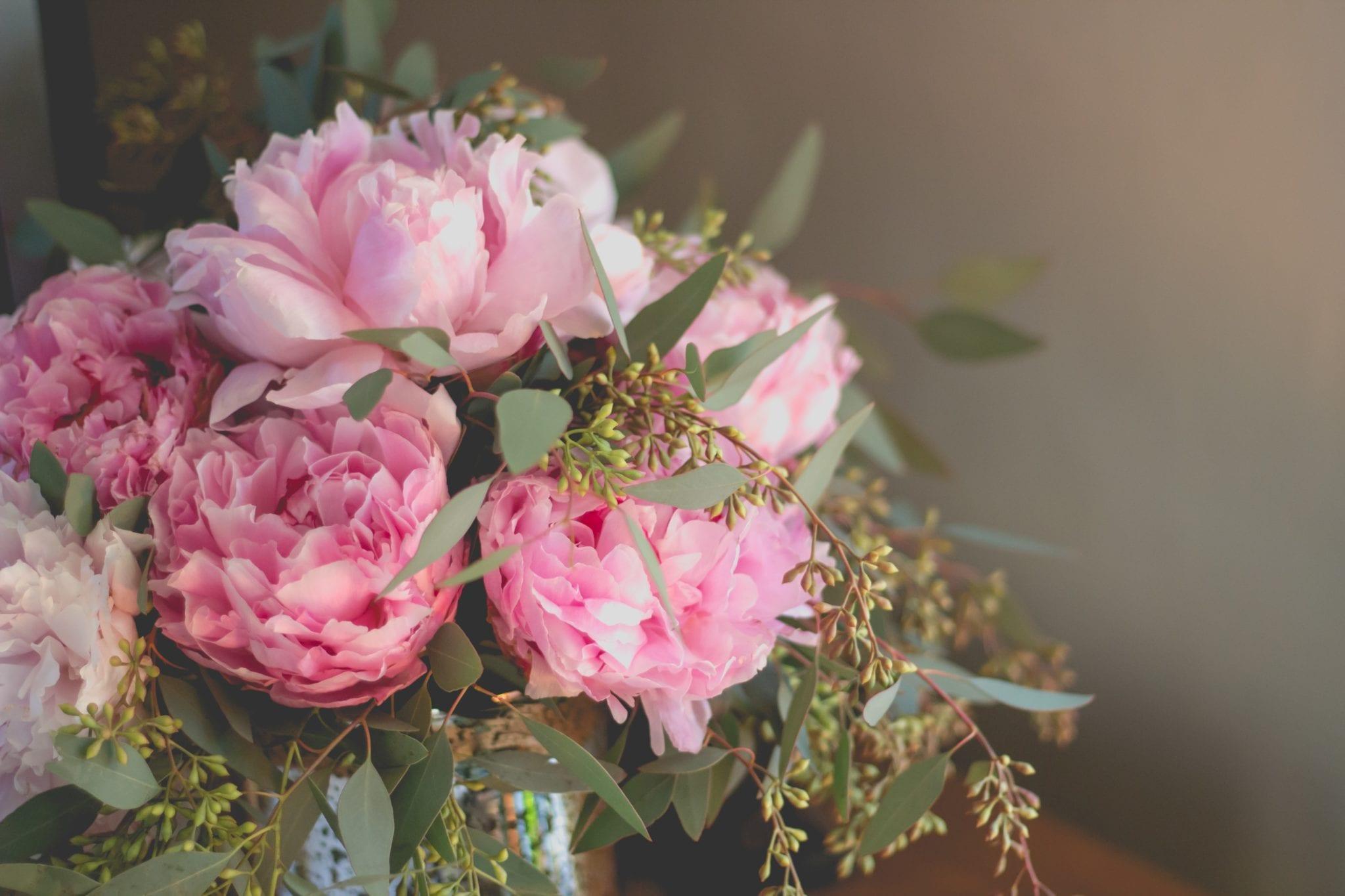 母親節的花-牡丹